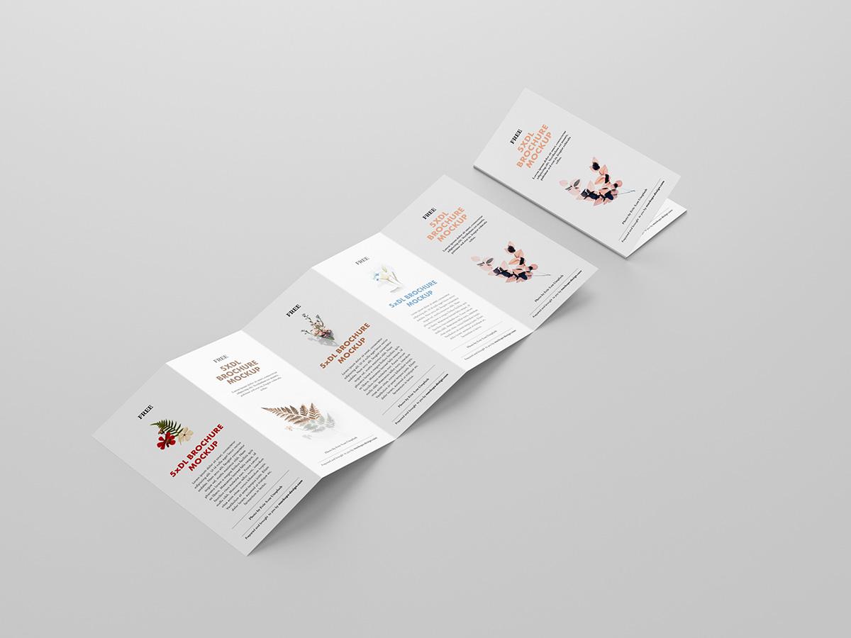 Free 5xDL leaflet mockup